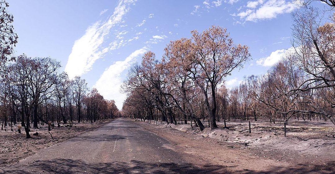 Bushfire Risk Management (BRMS) with Mapworks